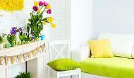 Bahar geldi; evimizi nasıl canlandırabiliriz?