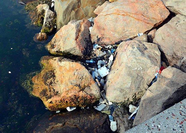 10. Midye kabukları, bira kutuları, pet şişeler ve çok daha fazlasıyla dolup taşan sahil kenarı kayalıkları.