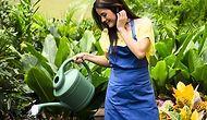 Kara Kış Gelmeden Bahçenizi Korumak İçin Yapmanız Gereken 13 Hayat Kurtarıcı Bilgi