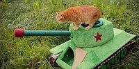 Kedisi İçin Sovyet Tankı Yapan Rus Mühendis