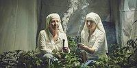 Manastırlardaki Esrarengiz Karışım: Tanrı, Alkol ve Hint Keneviri