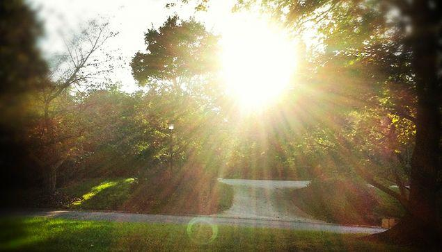 Ve Güneş seyrinin göz sağlığında olumsuz bir etki yaratmadığı yapılan deneylerle kanıtlandı.