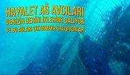Hayalet Ağ Avcıları Sayesinde Denizlerimiz Yeniden Canlanıyor!
