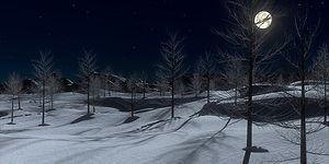 Hazır Kış Gelmişken Ufukları Genişletelim: Soğuk Gecelerde Sesler Neden Daha Net Duyulur?