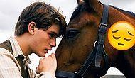 Üzücü Bir Gerçek: Atlar Sakatlandığında Neden Ölüme Mahkum Edilir?