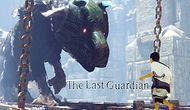 The Last Guardian Hakkında Merak Edilen Hiçbir Yerde Bulamayacağınız 11 Bilgi