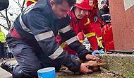 Yangından Kurtardığı Köpeği Kalp Masajı ile Tekrar Hayata Döndüren Kahraman İtfaiyeci