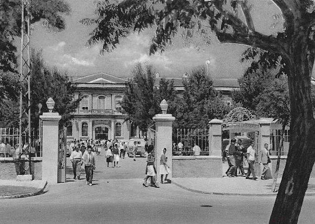 1950 yılında çekilen bu fotoğraf, Şam Üniversitesi Hukuk Fakültesi'nin dışındaki kadın öğrencileri gösteriyor.
