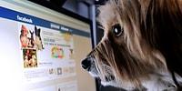 Facebook'ta Başkalarını 'İzlemek' Mutsuzlaştırıyor!