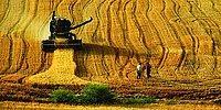 Sertifika Şartı Geliyor: Peki Yerel Tohumlar Tehlikede mi?