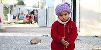 Mültecilerin Onurlu Bir Yaşam Sürebilmeleri İçin Çalışıp Fark Yaratıyorlar: Mülteciyim Hemşerim