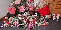 Evinde Baktığı 30 Tane Pug Cinsi Köpeği İçin Her Yıl Gani Gani Para Harcayan Hayvansever Kadın