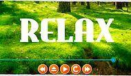 Dinlenmeye ve Odaklanmaya Hazırlanın: İnternet Ortamındaki En Dinlendirici 10 Servis