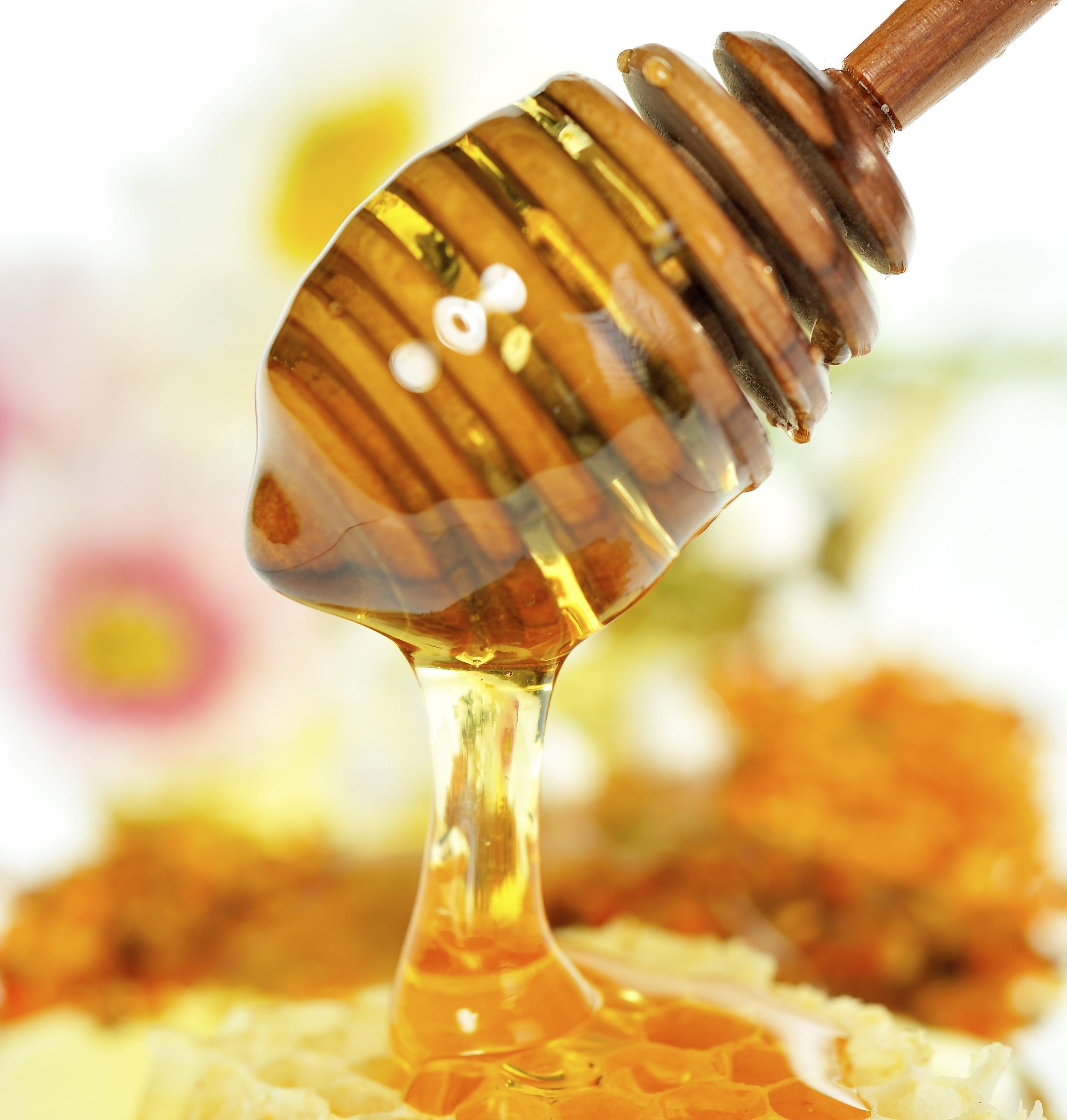 Сына, картинки пчелы и мед