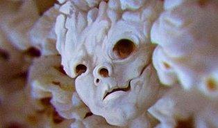 Sadece Nevrotik İnsanların Gördüğü Şeyleri Sen De Görecek misin?