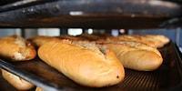 Sofralarımızın Vazgeçilmezi Ama Günde 5 Milyona Yakın Ekmek İsraf Ediyoruz!