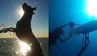 National Geographic'in Düzenlediği Yarışmada Dereceye Giren Birbirinden Yetenekli 14 Çocuk