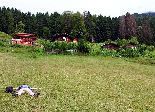 Ayder Yaylası ilk olarak 1987'de Turizm Merkezi ilan edilmiş, 1994 yılına gelindiğinde Milli Park, 1998'de ise Doğal Sit alanı olmuş ve koruma altına alınmıştı