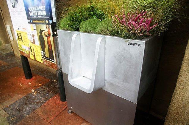 O kadar tuvalet ihtiyacı konuşup yalnızca pisuvarlardan bahsetmek de, dünyayı yalnızca erkeklerden ibaret sanmak gibi gelebilir.