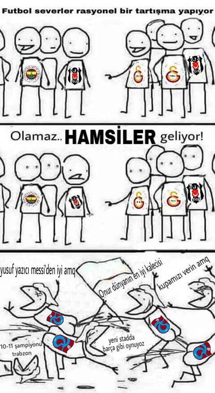14. Hamsiler