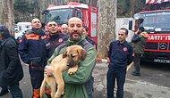 Günün En Güzel Haberi: Sondaj Kuyusuna Düşen Köpek, Günler Süren Çabaların Ardından Kurtarıldı!