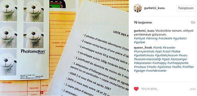 Her şey ehliyetini yeniletmeye giden Tandır'ın Instagram'dan bu fotoğrafı paylaşmasıyla başladı...