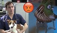 'Maske' Filmindeki Köpeğe Benzemesi İçin Estetik Ameliyata Maruz Kalan Yavrucak