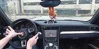 Porsche 911'i Doom Oynamak İçin Modifiye Eden Çılgın Adam