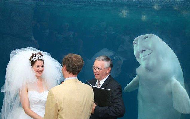 3. Başkan düğün töreninize davetsiz girdiğinde nefret dolmayın hemen.