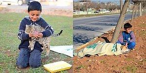 Yaralı Sokak Köpeğini Yardım Gelene Kadar Bırakmak İstemeyen Suriyeli Minik Çocuk