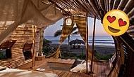 Her Şeyi Bırakıp Taşınmak İsteyeceğiniz Meksika'daki Güneş Enerjili Ağaç Evler: Playa Viva