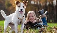 Çocukların Bir Köpekle Büyümesinin Gelişimlerine Sağladığı 11 Katkı