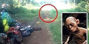 Endonezya Ormanlarında Görüntülenen 'Çıplak Canlı' Kafa Karıştırdı!