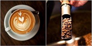 Kahve Sevenlerin Evlerinden Eksik Etmemesi Gereken 13 Arabica Çekirdek Türü