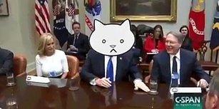 Trump'ın Aslında Koca Bir Kedi Olduğunun 16 Saniyede Kanıtı