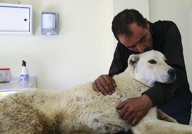 'Hayvanlar benim evlatlarım sayılır'
