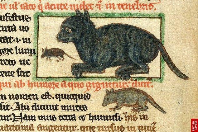 Cadıların yoldaşı olarak görülmeye başlayan kediler, artık toplum için tekinsizdir.