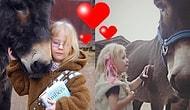 Sevginin En Saf Hali! Terapi Eşeğine Söylediği Sihirli Sözler ile Herkesi Şaşırtan Dilsiz Kız