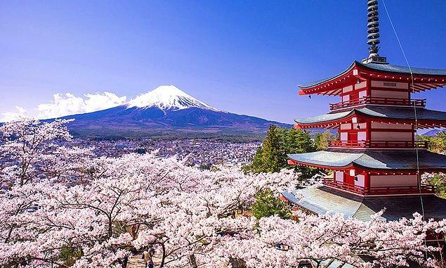 5. Hangisi Japonya'nın milli çiçeğidir?