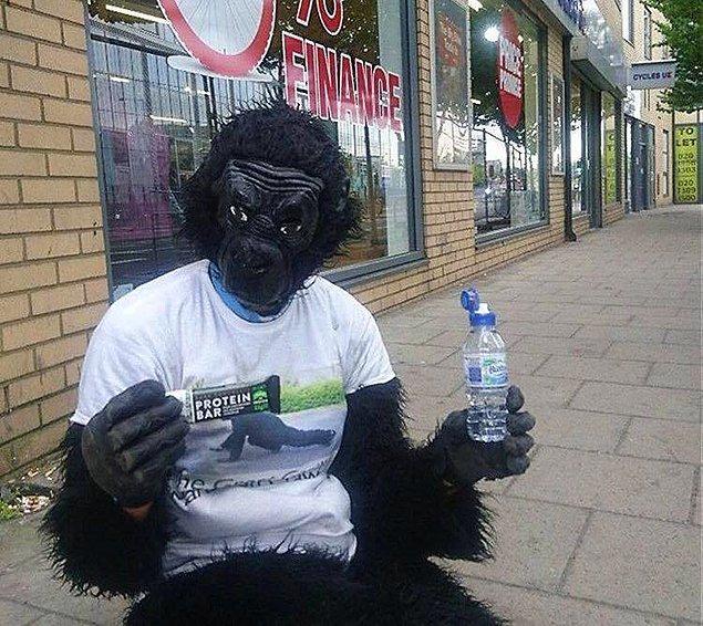 Tom 42 kilometreyi, goril kostümüyle iki eli ve dizleri üzerinde tamamladı.