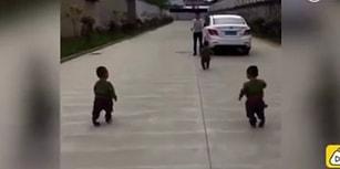 Bacakları Biraz Daha Uzun Olsa Daha Hızlı Koşup Babalarını İşe Kadar Takip Edecek Sevimli Ufaklıklar