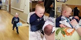 Yeni Doğan Küçük Kardeşini İlk Defa Gören Çocuğun Minnoşluğu