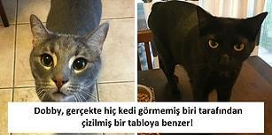 Arkadaşı Tatildeyken Kedilerine Bakmaya Giden Kadının Karşılaştığı Komik Ama Doğru Notlar!