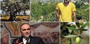 'Rant İçin Zeytin Ağaçlarına Kıymayın' Diyen Tarkan'a, Sanayi Bakanı Özlü'den Cevap: Zeytinlikleri mi Varmış?