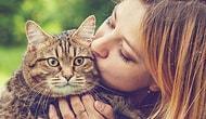 Dünyanın En İyi İşlerinden Biri: Yapacağınız Tek Şey, Tüm Sevginizle Kedileri Okşayıp, Kucaklamak!