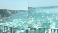 'Beşiktaş Donanması'ndan Şampiyonluk Kutlaması Gibi Şampiyonluk Kutlaması!