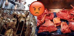 Köpek Yediği İçin Suçlanan Vietnamlı Genç: En Sevdiğim Yemekten Vazgeçecek Değilim!