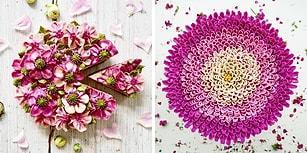 Kremalar Çiçek Açtı! Alman Pastacıdan Gerçek Çiçek Bahçelerini Andıran 30 Vegan Pasta