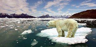 """""""Ne Küresel Isınması? Hava Buz Gibi"""" Diyenlere Bilimin Tokat Gibi Bir Yanıtı Var!"""