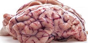 Beynimizle Alakalı Geçtiğimiz Günlerde Keşfedilen Bir Gerçek, Bilim Dünyasını Karıştırdı!